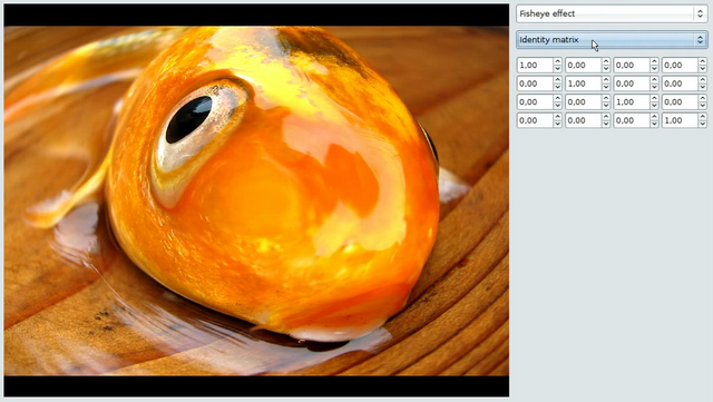 Hooray, fisheye effect on a fish! Click on the image to see the screencast